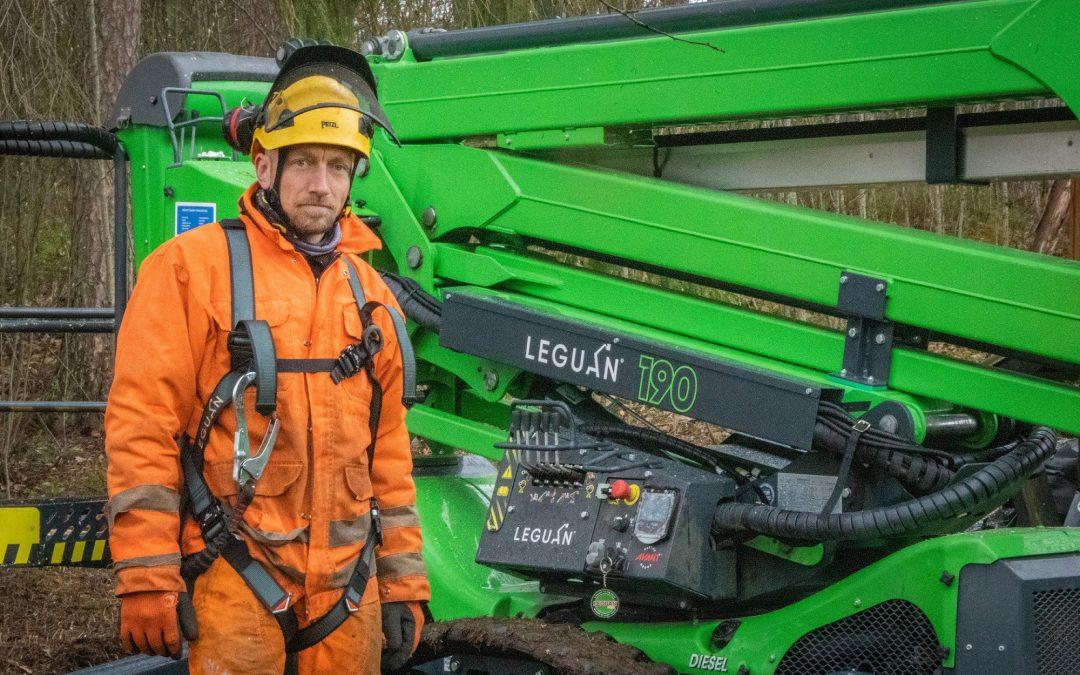 Leguan 190 helps a tree care company take down any tree – fast and safely